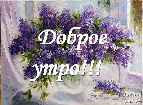 С добрым утром, красивая открытка, картинка с цветочками (цветы) для девушки, женщины скачать! скачать открытку бесплатно | 123ot