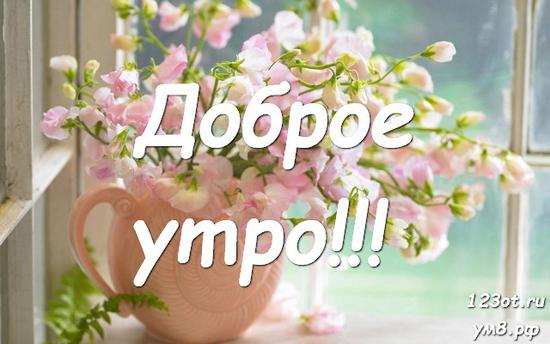 С добрым утром, красивая открытка, картинка с красивыми цветами для девушки, женщины скачать! скачать открытку бесплатно | 123ot