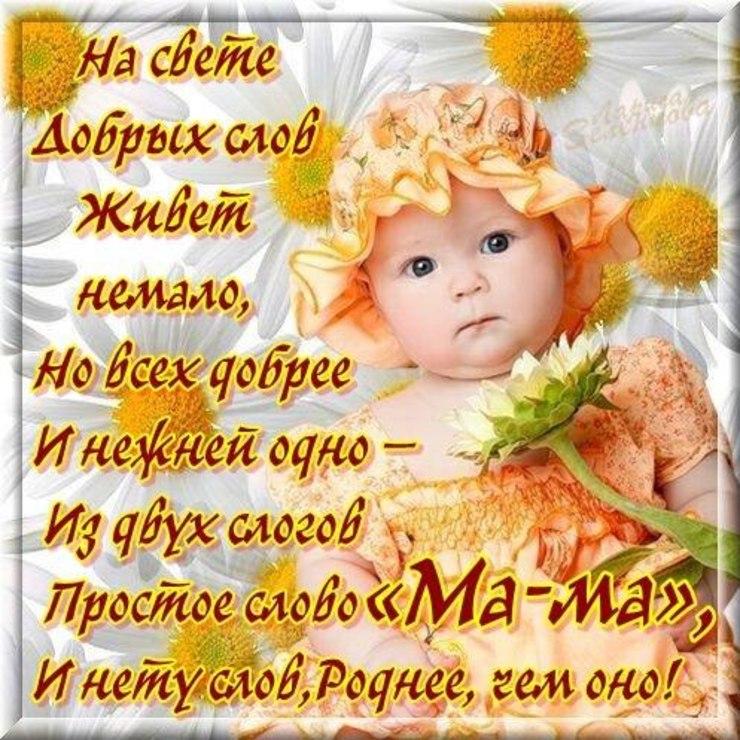 Стих подарю открытку маме
