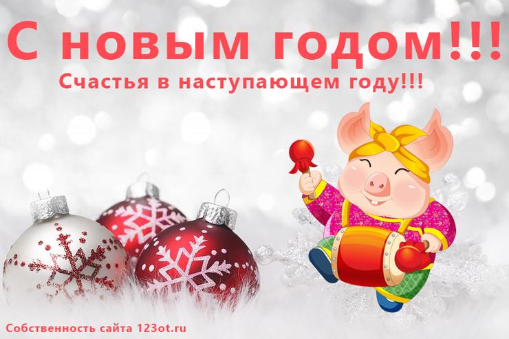 Фразами, живые картинки новогодние год свиньи 2019
