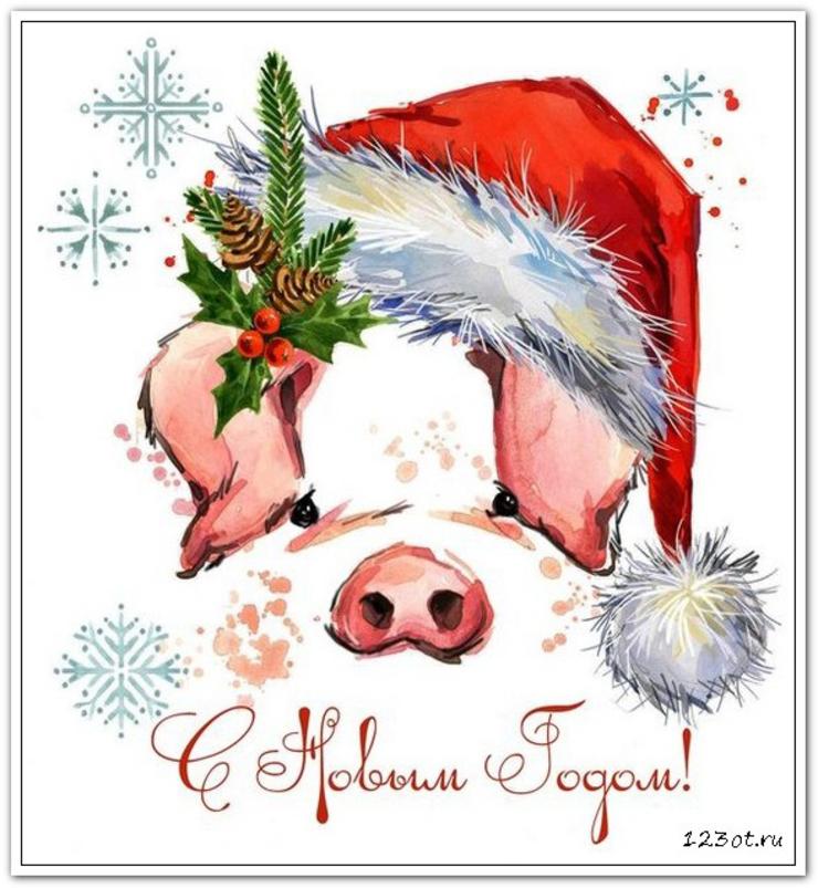 поздравления с новым годом 2019 год свиньи открытки