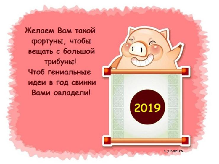 веселые поздравления в стихах с годом свиньи граница между темной