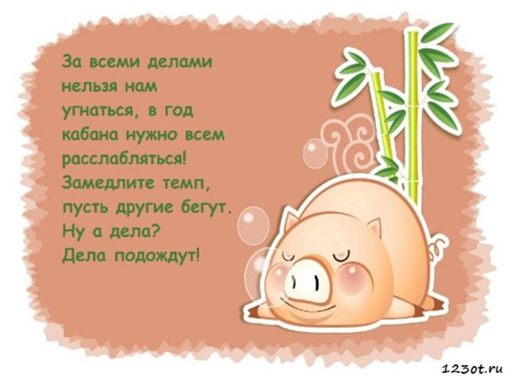 невесты поздравления с днем рождения год свиньи владимирович много лет