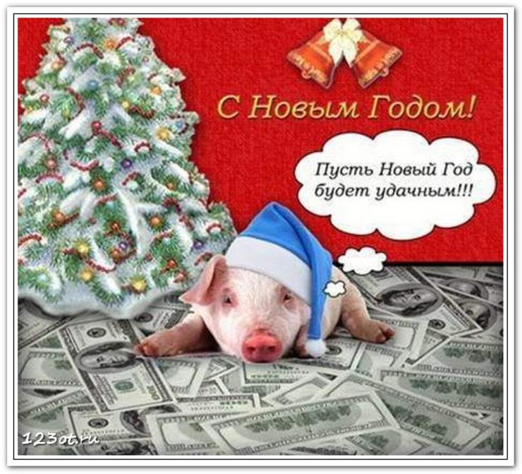 года картинка с поздравлением нового года свиньи сделать фотки, которых