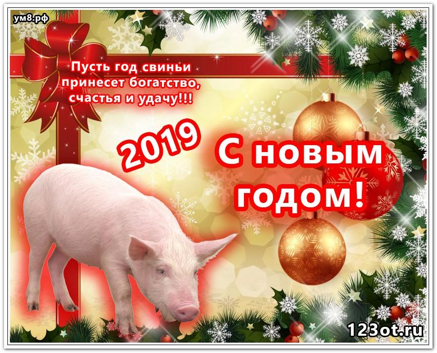 Поздравить воспитателя, поздравительные открытки с новым годом годом свиньи