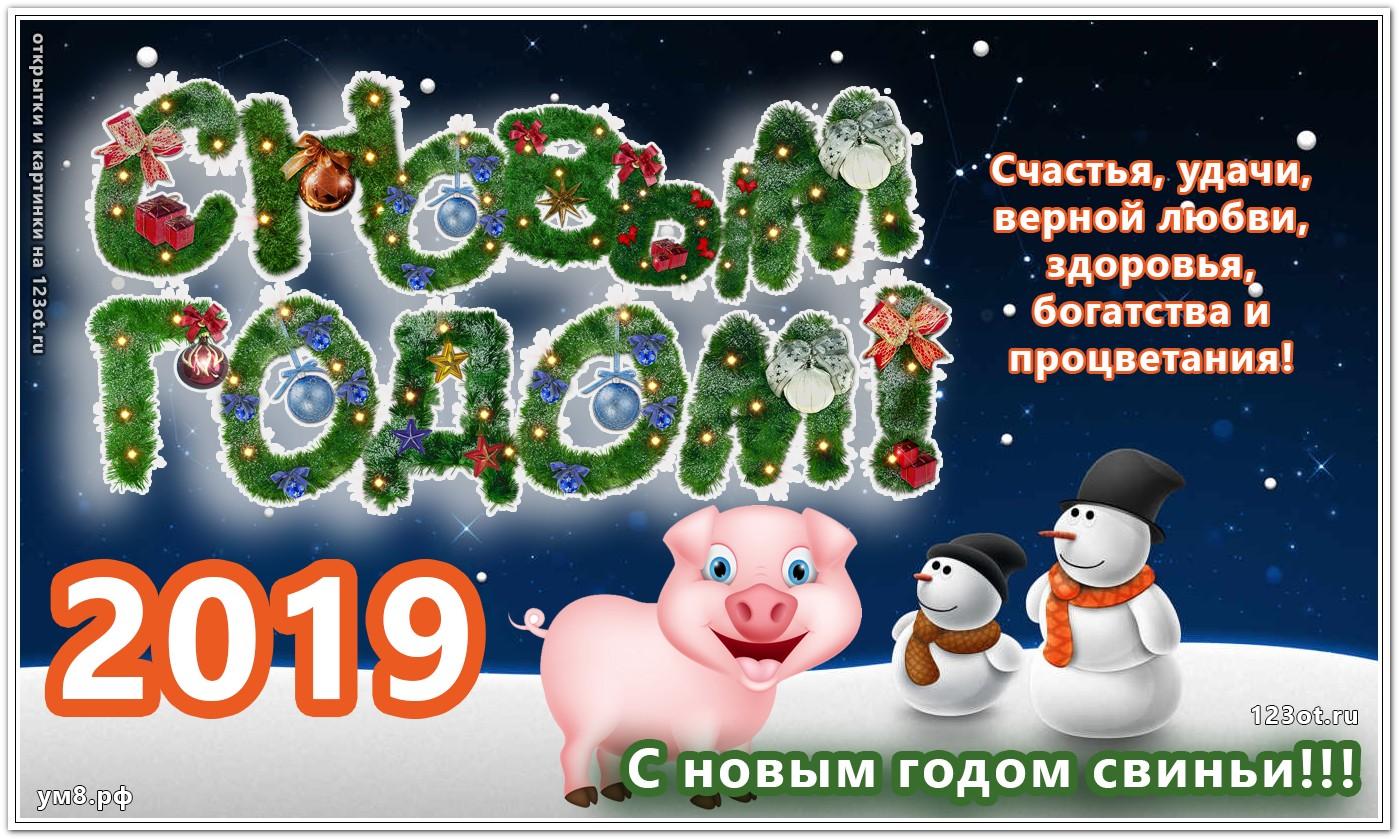 Для, живые картинки новогодние год свиньи 2019
