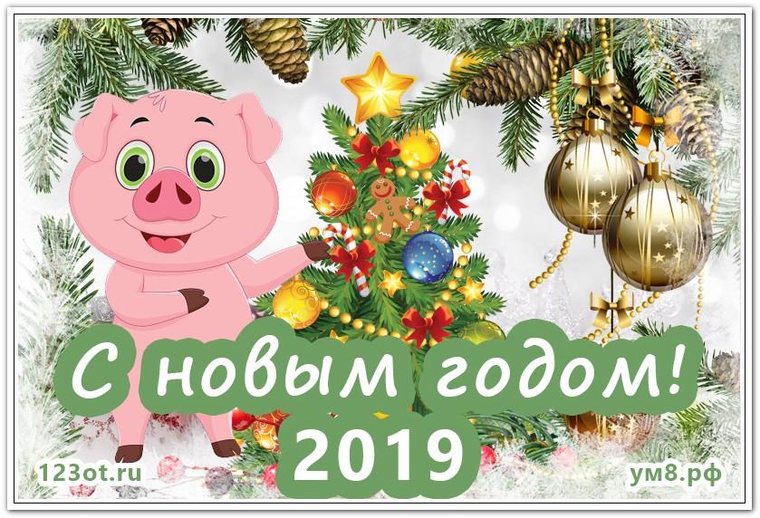 Енотов нарисованные, с новым годом соседи открытка