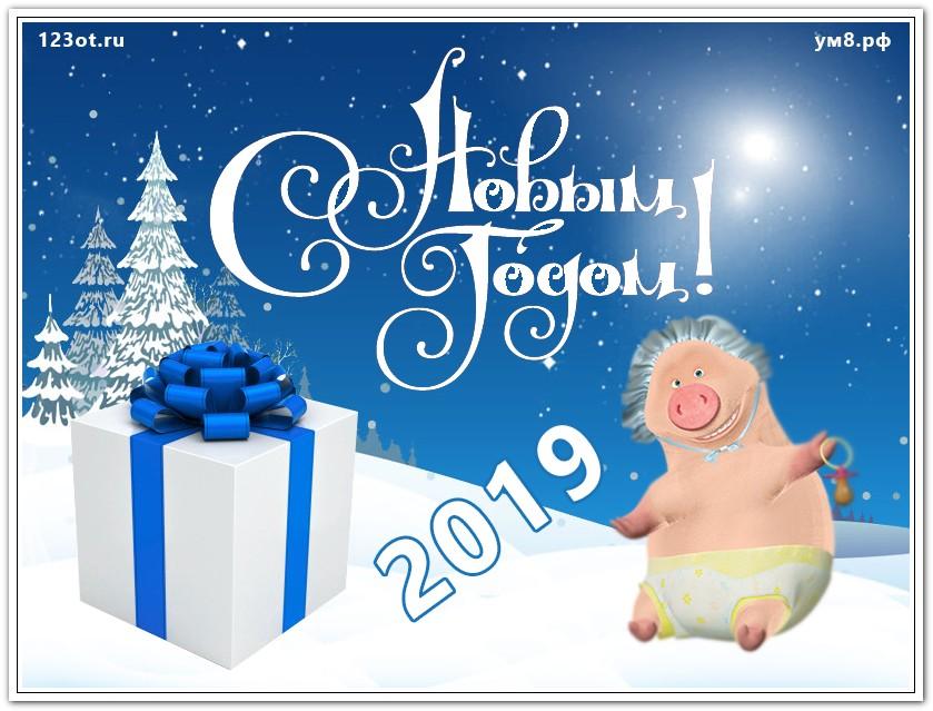 Открытки красивые с новым годом 2019 свиньи, детского