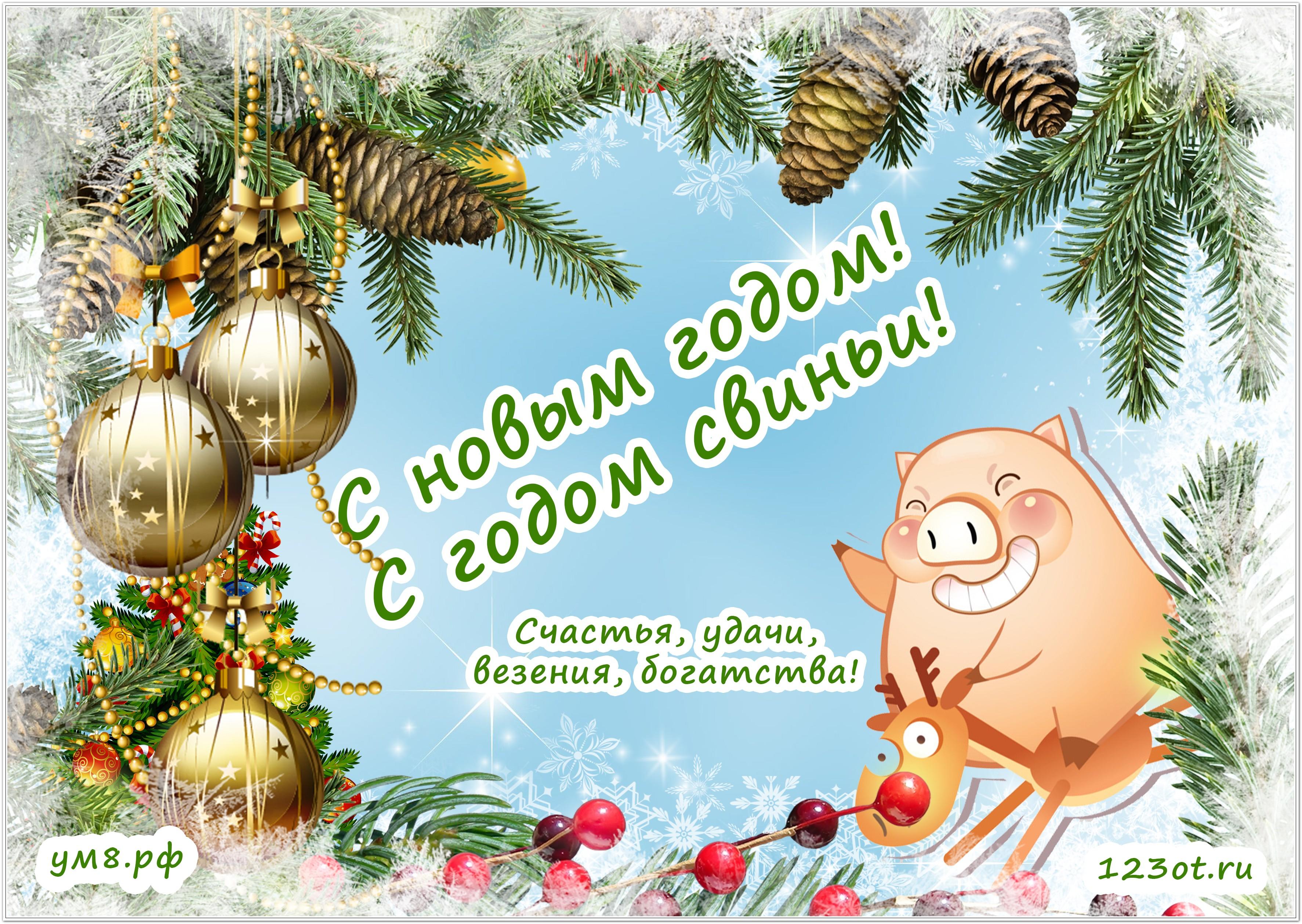 Открытки с текстом новым годом 2019 свиньи