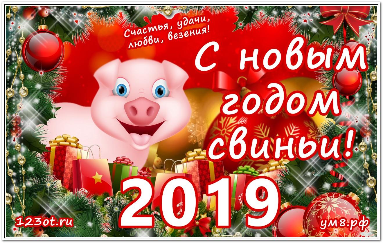 День, живые открытки с новым годом 2019 свиньи