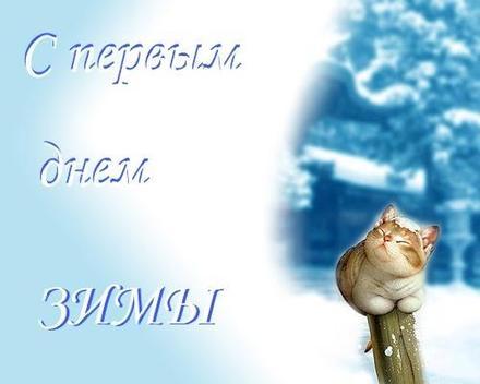 Открытка с первым днем зимы 1 декабря котик. Открытки  Открытка с первым днем зимы 1 декабря Прикольный котик скачать бесплатно онлайн скачать открытку бесплатно | 123ot
