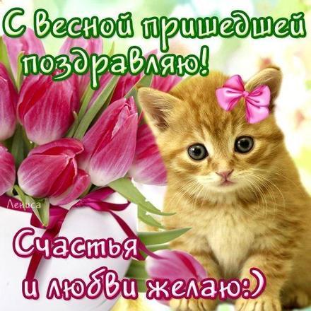 Открытка, Первый день весны, весна, поздравление, весна пришла, праздник весны, 1 марта, первый весенний день, котик. Открытки  Открытка, картинка, Первый день весны, весна, поздравление, весна пришла, праздник весны, 1 марта, первый весенний день, котик скачать бесплатно онлайн скачать открытку бесплатно | 123ot
