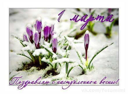 Открытка, картинка, первый день весны, поздравление с весной, цветы, подснежники, снег. Открытки  Открытка, картинка, первый день весны, открытка с первым днем весны, поздравление с первым днём весны скачать бесплатно онлайн скачать открытку бесплатно | 123ot