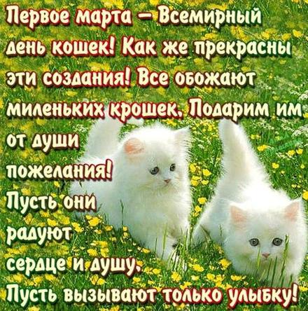 Открытка, картинка, первый день весны, первое марта, всемирный день кошек. Открытки  Открытка, картинка, первый день весны, открытка с первым днем весны, поздравление с первым днём весны скачать бесплатно онлайн скачать открытку бесплатно | 123ot