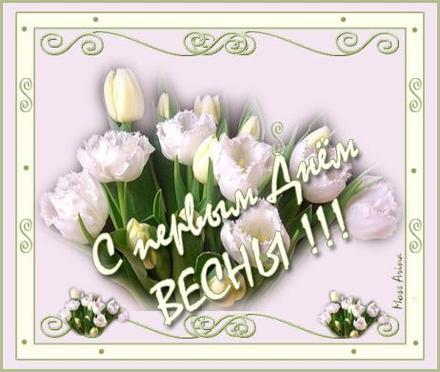 Открытка, картинка, Первый день весны, весна, 1 марта, поздравление, весна пришла, тюльпаны. Открытки  Открытка, картинка, Первый день весны, весна, 1 марта, поздравление, весна пришла, тюльпаны, цветы скачать бесплатно онлайн скачать открытку бесплатно | 123ot