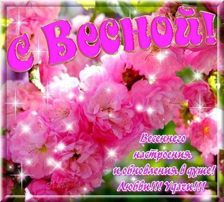 Открытка, картинка, первый день весны, поздравление с весной, цветы. Открытки  Открытка, картинка, первый день весны, открытка с первым днем весны, поздравление с первым днём весны скачать бесплатно онлайн скачать открытку бесплатно | 123ot
