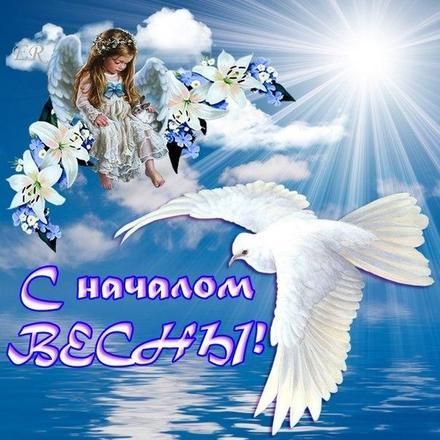 Открытка, картинка, Первый день весны, весна, поздравление, весна пришла, праздник весны, 1 марта, первый весенний день, голубь. Открытки  Открытка, картинка, Первый день весны, весна, поздравление, весна пришла, праздник весны, 1 марта, первый весенний день, голубь, солнце скачать бесплатно онлайн скачать открытку бесплатно | 123ot
