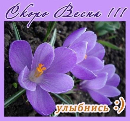 Открытка, картинка, первый день весны, первое марта, подснежники, скоро весна. Открытки  Открытка, картинка, первый день весны, открытка с первым днем весны, поздравление с первым днем весны, начало весны скачать бесплатно онлайн скачать открытку бесплатно | 123ot