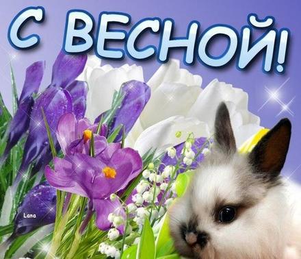 Открытка, картинка, первый день весны, первое марта, зайчик. Открытки  Открытка, картинка, первый день весны, открытка с первым днем весны, поздравление с первым днем весны, начало весны скачать бесплатно онлайн скачать открытку бесплатно | 123ot