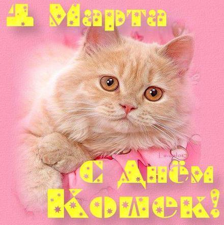 Открытка, картинка, первый день весны, первое марта, котик, всемирный день кошек. Открытки  Открытка, картинка, первый день весны, открытка с первым днем весны, поздравление с первым днем весны, начало весны скачать бесплатно онлайн скачать открытку бесплатно | 123ot