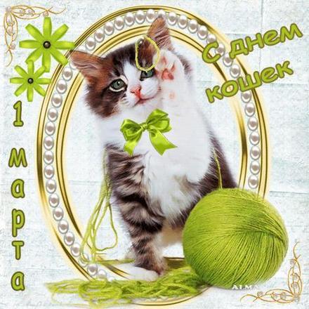 Открытка, картинка, первый день весны, первое марта, котенок. Открытки  Открытка, картинка, первый день весны, открытка с первым днем весны, поздравление с первым днем весны, начало весны скачать бесплатно онлайн скачать открытку бесплатно   123ot