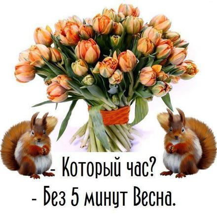 Открытка, картинка, первый день весны, поздравление с весной, цветы, подснежники, тюльпаны. Открытки  Открытка, картинка, первый день весны, открытка с первым днем весны, поздравление с первым днём весны скачать бесплатно онлайн скачать открытку бесплатно | 123ot