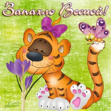 Открытка, картинка, Первый день весны, весна, поздравление, весна пришла, праздник весны, 1 марта, тигренок. Открытки  Открытка, картинка, Первый день весны, весна, поздравление, весна пришла, праздник весны, 1 марта, тигренок, запахло весной, бабочки скачать бесплатно онлайн скачать открытку бесплатно   123ot