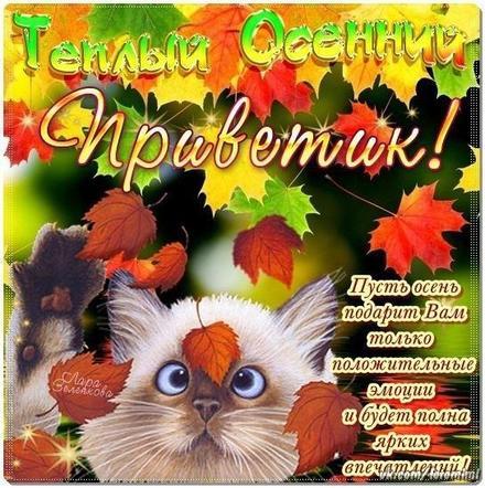 Открытка, картинка, Первый день осени, 1 сентября, начало осени, осень, фразы, пожелание, осень пришла, конец лета, чудесная пора, золотая осень, классная осень, осенний привет. Открытки  Открытка, картинка, Первый день осени, 1 сентября, начало осени, осень, фразы, пожелание, осень пришла, конец лета, чудесная пора, золотая осень, классная осень, осенний привет, кот скачать бесплатно онлайн скачать открытку бесплатно   123ot