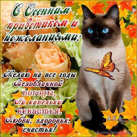 Открытка, картинка, Первый день осени, 1 сентября, начало осени, осень, фразы, пожелание, осень пришла, конец лета, чудесная пора, золотая осень, классная осень, кот. Открытки  Открытка, картинка, Первый день осени, 1 сентября, начало осени, осень, фразы, пожелание, осень пришла, конец лета, чудесная пора, золотая осень, классная осень, кот, бабочка, листва скачать бесплатно онлайн скачать открытку бесплатно | 123ot