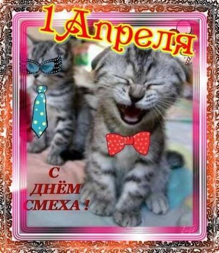 Открытка, картинка, 1 апреля, День смеха, День дурака, поздравление, прикол, смех, котенок. Открытки  Открытка, картинка, 1 апреля, День смеха, День дурака, поздравление, прикол, смех, котенок, улыбка скачать бесплатно онлайн скачать открытку бесплатно | 123ot