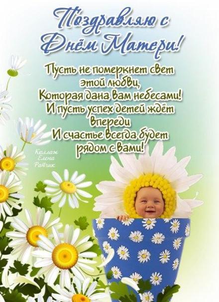 Открытка, картинка, День Матери, поздравление, стихи. Открытки  Открытка, картинка, День Матери, поздравление, стихи, малыш, цветы, ромашки скачать бесплатно онлайн скачать открытку бесплатно   123ot