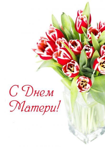 Открытка, картинка, День Матери, поздравление, праздник, тюльпаны. Открытки  Открытка, картинка, День Матери, поздравление, праздник, тюльпаны, букет скачать бесплатно онлайн скачать открытку бесплатно | 123ot