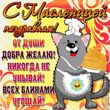 Открытка, картинка, Масленица, русская традиция, поздравление, Щедрая Масленица, блины, пожелание, кот. Открытки  Открытка, картинка, Масленица, русская традиция, поздравление, Щедрая Масленица, блины, пожелание, кот, стишок скачать бесплатно онлайн скачать открытку бесплатно | 123ot