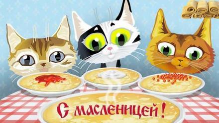 Открытка, картинка, Масленица, русская традиция, поздравление, коты. Открытки  Открытка, картинка, Масленица, русская традиция, поздравление, коты, блины, сметана скачать бесплатно онлайн скачать открытку бесплатно | 123ot
