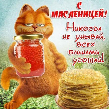 Открытка, картинка, Масленица, русская традиция, поздравление, русская традиция, кот. Открытки  Открытка, картинка, Масленица, русская традиция, поздравление, русская традиция, кот, блины, икра, стихи скачать бесплатно онлайн скачать открытку бесплатно | 123ot