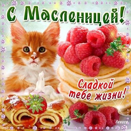 Открытка, картинка, Масленица, русская традиция, поздравление, Щедрая Масленица, блины, пожелание, малина. Открытки  Открытка, картинка, Масленица, русская традиция, поздравление, Щедрая Масленица, блины, пожелание, малина, котенок скачать бесплатно онлайн скачать открытку бесплатно | 123ot