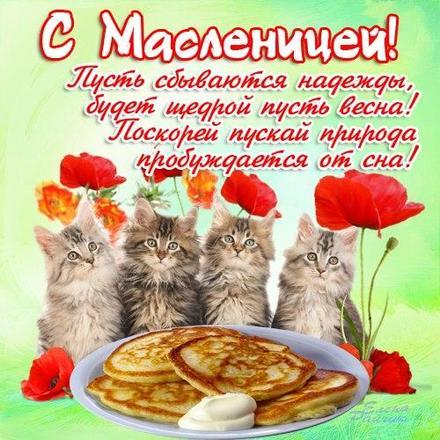 Открытка, картинка, Масленица, праздник, русская традиция, народные гуляния, блины, стишок, котята. Открытки  Открытка, картинка, Масленица, праздник, русская традиция, народные гуляния, блины, стишок, котята, сметана скачать бесплатно онлайн скачать открытку бесплатно | 123ot