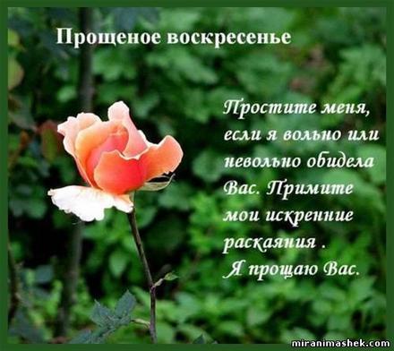Открытка, картинка, Прощенное Воскресенье, русская традиция, стихи, роза. Открытки  Открытка, картинка, Прощенное Воскресенье, русская традиция, стихи, роза, сад скачать бесплатно онлайн скачать открытку бесплатно | 123ot