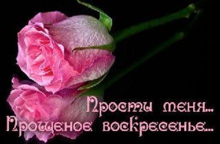 Открытка, картинка, Прощенное Воскресенье, русская традиция, стихи, роза. Открытки  Открытка, картинка, Прощенное Воскресенье, русская традиция, стихи, роза, прощение скачать бесплатно онлайн скачать открытку бесплатно | 123ot