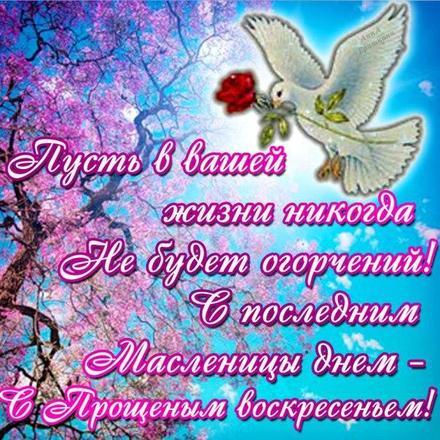 Открытка, картинка, Прощенное Воскресенье, русская традиция, голубь, цветок. Открытки  Открытка, картинка, Прощенное Воскресенье, русская традиция, голубь, цветок, стихи скачать бесплатно онлайн скачать открытку бесплатно | 123ot