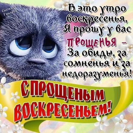 Открытка на Прощённое Воскресение котик. Открытки  Открытка, картинка, Прощенное Воскресенье, русская традиция, стихи, пожелание, котик скачать бесплатно онлайн скачать открытку бесплатно | 123ot