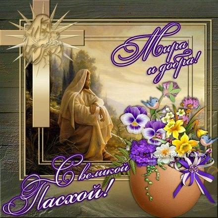 Открытка, картинка, Пасха, праздник, поздравление, Христос воскрес, скорлупа. Открытки  Открытка, картинка, Пасха, праздник, поздравление, Христос воскрес, скорлупа, цветы, анютины глазки скачать бесплатно онлайн скачать открытку бесплатно   123ot