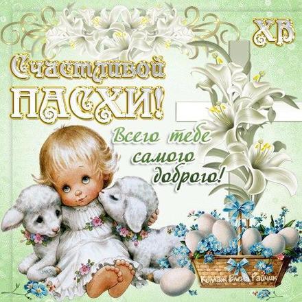 Открытка, картинка, Пасха, крашеные яйца, поздравление, цветы, ангелочек. Открытки  Открытка, картинка, Пасха, крашеные яйца, поздравление, цветы, ангелочек, овечки скачать бесплатно онлайн скачать открытку бесплатно | 123ot