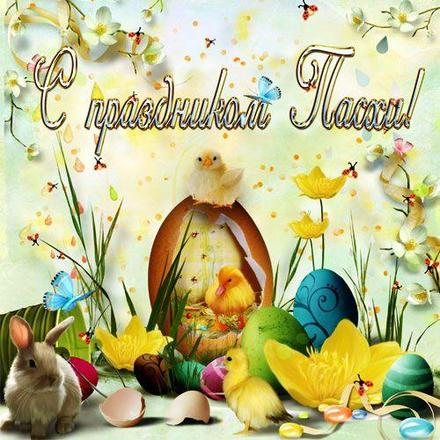 Открытка, картинка, Пасха, поздравление, Христос Воскрес, цыплята. Открытки  Открытка, картинка, Пасха, поздравление, Христос Воскрес, цыплята, крашенки, цветы скачать бесплатно онлайн скачать открытку бесплатно   123ot
