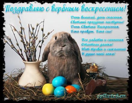 Открытка, картинка, Вербное Воскресенье, праздник, поздравление, верба, кролик. Открытки  Открытка, картинка, Вербное Воскресенье, праздник, поздравление, верба, кролик, крашеные яйца скачать бесплатно онлайн скачать открытку бесплатно | 123ot