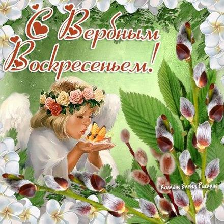 Открытка, картинка, Вербное Воскресенье, праздник, поздравление, верба, ангелочек. Открытки  Открытка, картинка, Вербное Воскресенье, праздник, поздравление, верба, ангелочек, веночек скачать бесплатно онлайн скачать открытку бесплатно   123ot