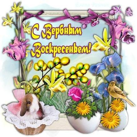 Открытка, картинка, Вербное Воскресенье, праздник, поздравление, верба, зайчик. Открытки  Открытка, картинка, Вербное Воскресенье, праздник, поздравление, верба, зайчик, цветы, птичка скачать бесплатно онлайн скачать открытку бесплатно | 123ot