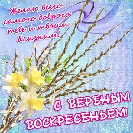 Открытка, картинка, Вербное Воскресенье, праздник, поздравление, верба, цветы. Открытки  Открытка, картинка, Вербное Воскресенье, праздник, поздравление, верба, веточки, цветы скачать бесплатно онлайн скачать открытку бесплатно | 123ot
