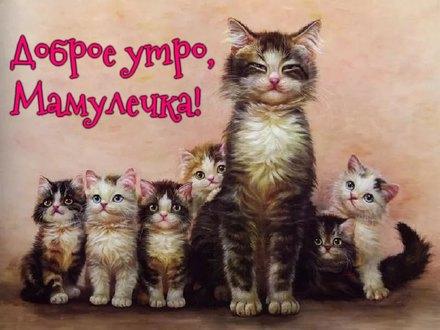Доброе утро, мамулечка! Открытка маме с добрым утром! Открытка для мамы доброе утро! Открытка с котами для мамы с пожеланием доброго утра! скачать открытку бесплатно   123ot