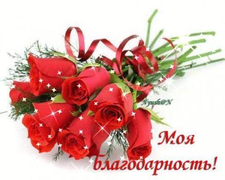 Открытка, картинка с надписью Моя благодарность! Открытка с спасибо с букетом роз! Красные розы! Открытка спасибо! скачать открытку бесплатно | 123ot